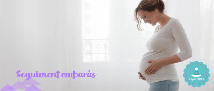 visita-control-embaràs-embarassada-seguiment-consulta-llevadora-matrona-diabetis-gestacional-girar-nado-natges-provocar-el-part-privada-privat