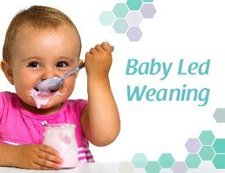 Baby-Led-Weaning-Iniciació-a-l'alimentació-autoregulada-nadó-bebe-infantil-menjar-sa-llevadora-espaimares-espai-mares-Girona-BLW-sòlids-passar-a-sòlid-calendari-introducció-aliments-alèrgens-gluten-ou-intolerància-al·lèrgies-ordre-consells-farinetes-pautes-pauta-guia-salut-nadons-evitar-sobrepès-educació-alimentària-online-BLW
