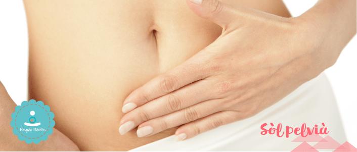 Valoració-de-sòl-pelvià-pèlvic-visita-consulta-a-domicili-llevadora-especialitzada-incontinència-urinaria-gasos-fecal-exercicis-recuperació-rehabilitació-embaràs-postpart-kegel-hipopressius-òrgans-pelviàns-prolapse-grau-1-2-3-solució-diàstasi-diastasis-tonificar-perineu-estrip-estrips-cesàrea-cesaria-òrgans-pelvians-diafragma-girona-EspaiMares-Espai-Mares